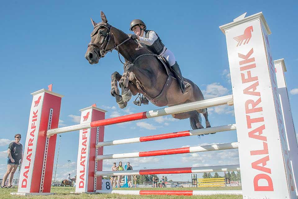 Nora till häst